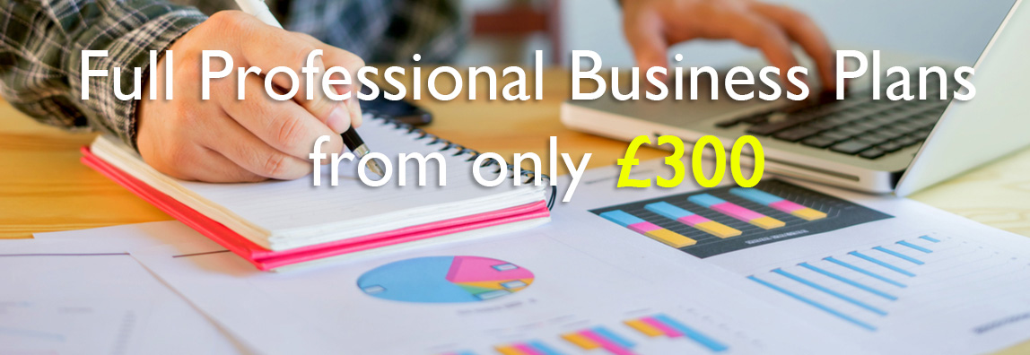 Full professional Business Plans from only £300